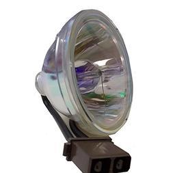 Amazing Lamps D95-LMP/D95LMP Replacement 150 Watt DC BULB ON