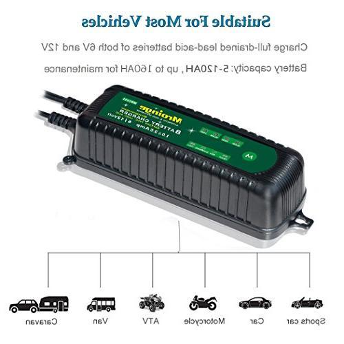 Mroinge 6V and 12V Vehicle Battery for TVs, Powersports, More GEL WET AGM Waterproof