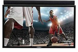 SunBriteTV Outdoor 49-Inch Pro HD LED TV - SB-4917HD-BL Blac