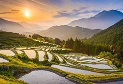 OFILA Rice Terrace Backdrop 7x5ft Countryside Landscape Phot